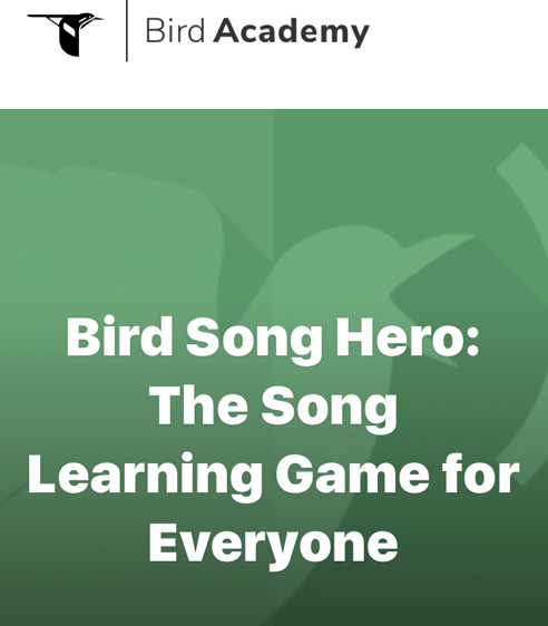 BIRD SONG HERO