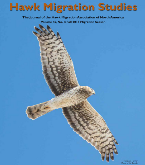 HAWK MIGRATION STUDIES